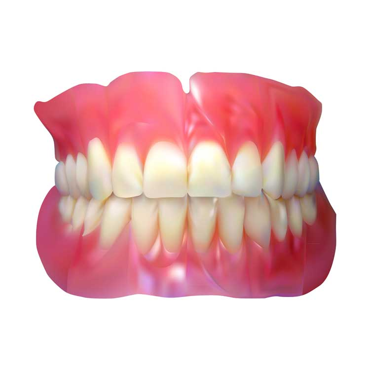 Dentures - Riverdale Dentist | Dr. Taller Dental Family Practice in Bronx, NY